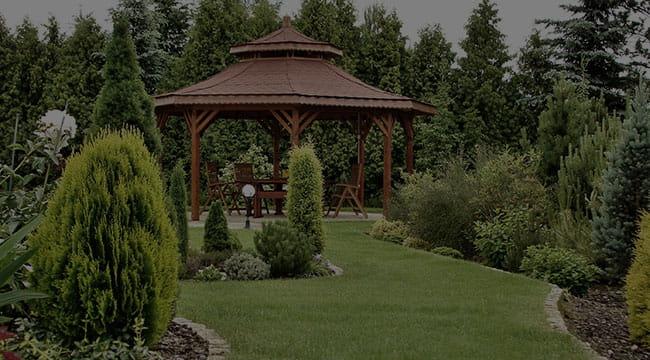 Wesley Chapel Garden Design